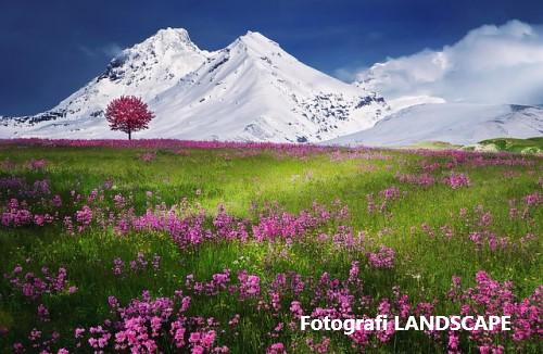 Bedakan Teknik Foto Landscape dan Portrait Untuk Hasil Yang Pas